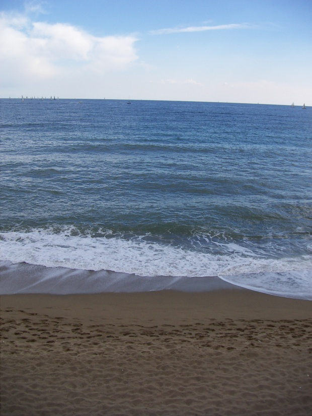el mar bcn